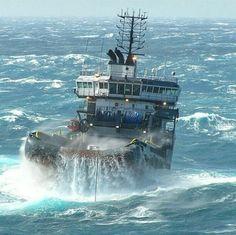 lifestyle inside the navy site Merchant Navy, Merchant Marine, Kayak Fishing, Fishing Boats, Sea State, Boat Rod Holders, Explorer Yacht, Great Lakes Ships, Navy