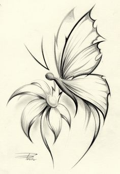 Butterflies On Flower Skectches | Butterfly Flower by *davepinsker on deviantART