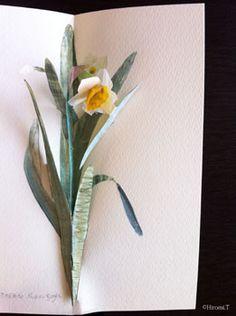 ■pop-up~Narcissus~ | Hiromi's Pop-Up Gate
