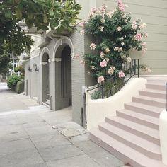 San Francisco style. #SanFrancisco#roses#vsco#vscocam#vscogood#decor#pastel#pink#faded