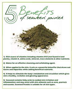 Benefits of Seaweed Powder