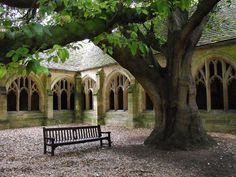 New College Cloisters. My favorite place in Oxford! ahh!