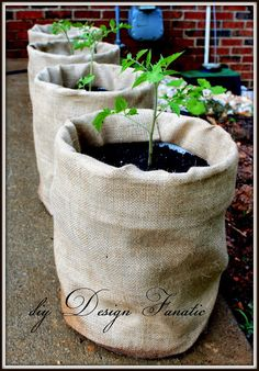 Disguise unsightly plastic buckets with burlap for an instant garden makeover.