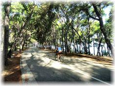 autor: XVII, misto radnje: Split Croatia, Nasa, Most Beautiful, Sidewalk, Country Roads, World, Photography, Author, Photograph