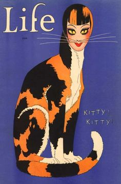 """Kitty, Kitty"" 