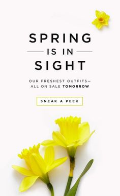 Such a simple email design but the messaging is powerful. The yellow daffodils are striking but don't draw your eye away from the large headline.