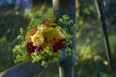 Anglická růže Graham Thomas v doprovodu barevných řebříčků, hvozdíku bradatého, dlužichy a kontyhele měkkého