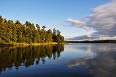 Jezioro_Sajno..jpg (900×598)