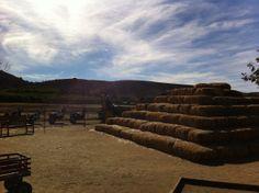 hay pyramid at Underwood Family Farms