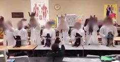 The video appears to show students in lab coats performing a dance routine with the dead cats they are about to dissect.