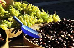 Autumn at its best Seasons In The Sun, Thessaloniki, Greek Islands, Greece, Autumn, Fruit, Vegetables, Food, Greek Isles