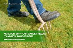 The health of your turf is not just about what you pour over it but also, the quality of materials beneath it. The key to better soil health is #aeration. Find out how #SoilAeration can enhance your garden  how to do it properly.  #TreeCare
