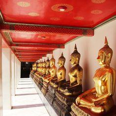 Wat Pho in #Bangkok  Do you want to go? by tripadvisor