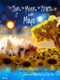 Author Interview: Rich Okun of The Sun, The Moon, The Stars And Maya. As part of my spiritual journey, I want to contribute whatever I can through creative expression of spiritually impactful messages in words and pictures.