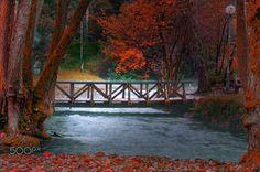 Wooden Bridge (Sarajevo, B&H) by Mevludin Sejmenovic on 500px