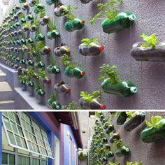 Diciembre: Decorar los espacios comunes de una urbanización con botellas