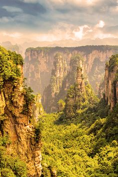 Zhangjiajie countrywide wooded area park in Hunan arena is ordinary for its aerial sandstone pillars. ultimate explored strolling, its returned trails accomplish for a simple option to get away the crowds and locate the ultimate views. as the mists alight, it's easy to peer why this area has long been an concept for average chinese language art work.  #travel #travelphotography #travelgram #travelholic #travelguide #travelling #traveling #traveller #travels #traveler #travelbook #travellers