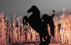Headless horseman Halloween silhouette yard haunt                                                                                                                                                                                 More