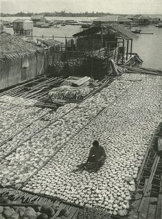 Fish drying in the Philippines National Geographic | February 1942
