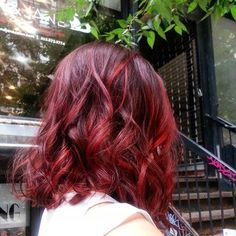 Dark Red Lob with Light Red Highlights