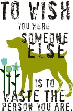 to wish you were someone else is to waste the person you are. (weimaraner)
