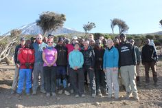 Triumphant group after their amazing trek to the summit of Kilimanjaro Mount Kilimanjaro, Tanzania, Trekking, Africa, Tours, Adventure, Group, Amazing, Adventure Game