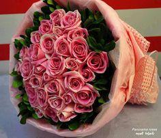 984f49e9c3e8 143 meilleures images du tableau Roses En Pot ! Roses En Bouquets ...