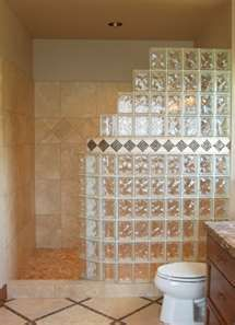 Like this glass block design without the tile trim; blue glass tiles inside the shower.