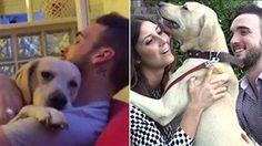 """""""Ettore, ma cosa hai combinato?"""" La storia del cane che si scusa   Guarda  il video   /  Leggi  l'articolo"""