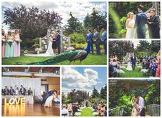 We're so pleased to share these photos of a wedding held on grounds this summer. Congratulations Courtney and Scott, and thanks for sharing your gorgeous pics Anna Michalska Photography! Only at the zoo will a peacock photobomb your big day.