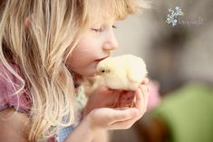 Seriously cute easter photoshoot on Fotopastele - lots of chicks, eggs and kids :)