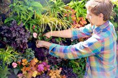 Florafelt Vertical Garden for a shade garden in San Francisco by Brandon Pruett from Living Green. http://LivingGreen.com