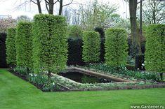 Brookergarden | Ландшафтный дизайн садов и парков