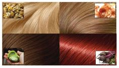 Many women dye the hair with special hair color. To be able without fear change hair color, we suggest turning to natural ways of dye. We`ll show you how to dye your hair naturally,. Change Hair Color, Color Your Hair, Hair Colour, Pelo Natural, Belleza Natural, Whipped Coconut Oil, Color Del Pelo, Color Rubio, Golden Blonde Hair