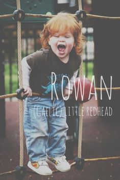 Find a Name for your Baby! - Gaelic Baby Names - Ideas of Gaelic Baby Names - Rowan = little redhead. Origin: Gaelic Gaelic Baby Names Ideas of Gaelic Baby Names Rowan = little redhead. Little Boy Names, Cute Baby Names, Baby Girl Names, Kid Names, Baby Boy, Gaelic Baby Names, Unusual Baby Names, Name Inspiration, Pretty Names