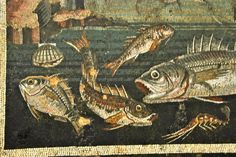 Framed fish mosaic - National Archaeological Museum; Naples, Italy