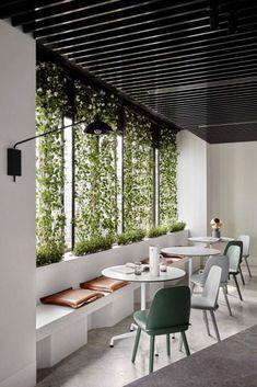 Piso Concreto Green Wall Pinteres