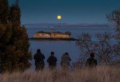 full moon over island - Google Search