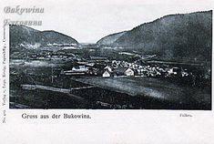 Bucovina interbelică în imagini – Societatea pentru Cultura și Literatura Română în Bucovina Cow, Literatura, Cattle