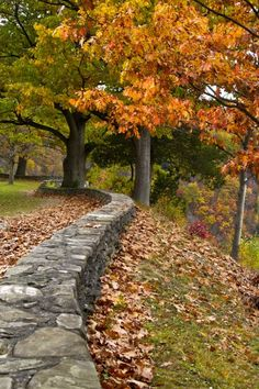 Upstate New York in the fall - Love!