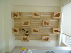 dog playroom ideas google search bookcase climber litter box