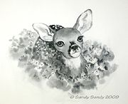 A Whitetail Fawn Drawing