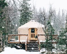 themountainandme:  forrestmankins:  Home for a few nights in Alaska.  So much fucking yes