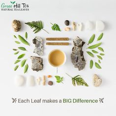 Every leaf has a story to tell and it is same with the #Tea! Different teas comprise of various benefits that can be totally good for you.  To get your tea, visit: http://www.greenhilltea.com/ #HealthyTea #TeaLove
