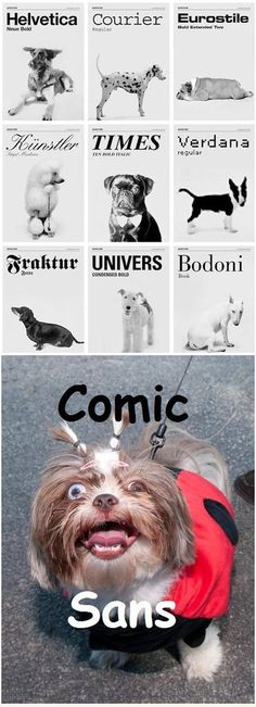 LOL - Dogs as fonts - www.funny-pictures-blog.com