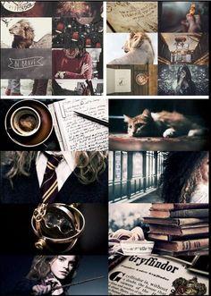 Gryffindor aesthetics