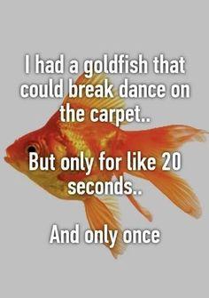 Funny Breakdancing Goldfish Meme