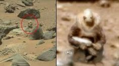 Alien Soldier Spotted Stalking Curiosity Rover On Mars - Fullact Trending Stories With The Laugh Mixture Nasa Pictures, Study Pictures, Nasa Images, Paranormal, Aliens And Ufos, Ancient Aliens, Sonda Curiosity, Mars, Alien Soldier
