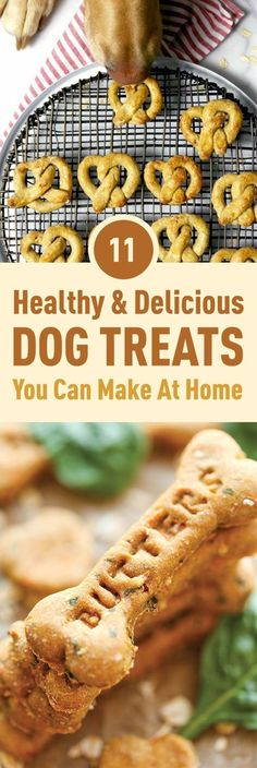 When it comes to our pets there's very little we wouldn't give them we simply need them to have the best and be the most healthy they can be. Here's our compilation of some of the most healthy & delicious treats you can make for your dogs at home.