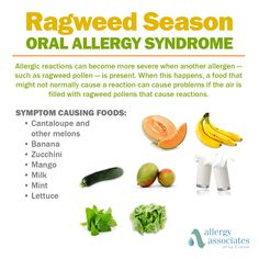 If you're allergic to ragweed certain foods could cause you even more symptoms! Learn about oral allergy syndrome here: Natural Remedies For Allergies, Allergy Remedies, Banana Allergy Symptoms, Histamine Intolerance Symptoms, Food Intolerance, Oral Allergy Syndrome, Signs Of Food Allergies, Allergy Shots, Living Room